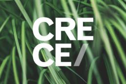 Crece agency